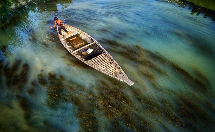 পানিতে সবুজের ছোঁয়া। স্থান: ঘাঘট নদী, গাইবান্ধা (ছবি: রেজওয়ান রহমান)