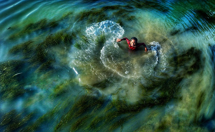 পানিতে সবুজ। স্থান: ঘাঘট নদী, গাইবান্ধা (ছবি: রেজওয়ান রহমান)